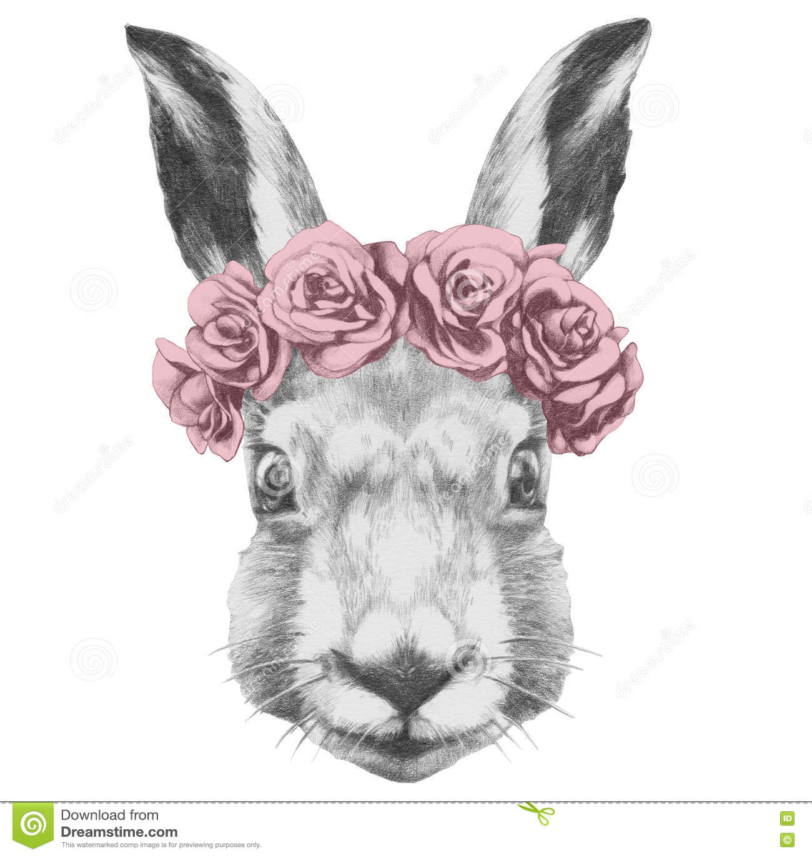Dibujo original del conejo con las rosas