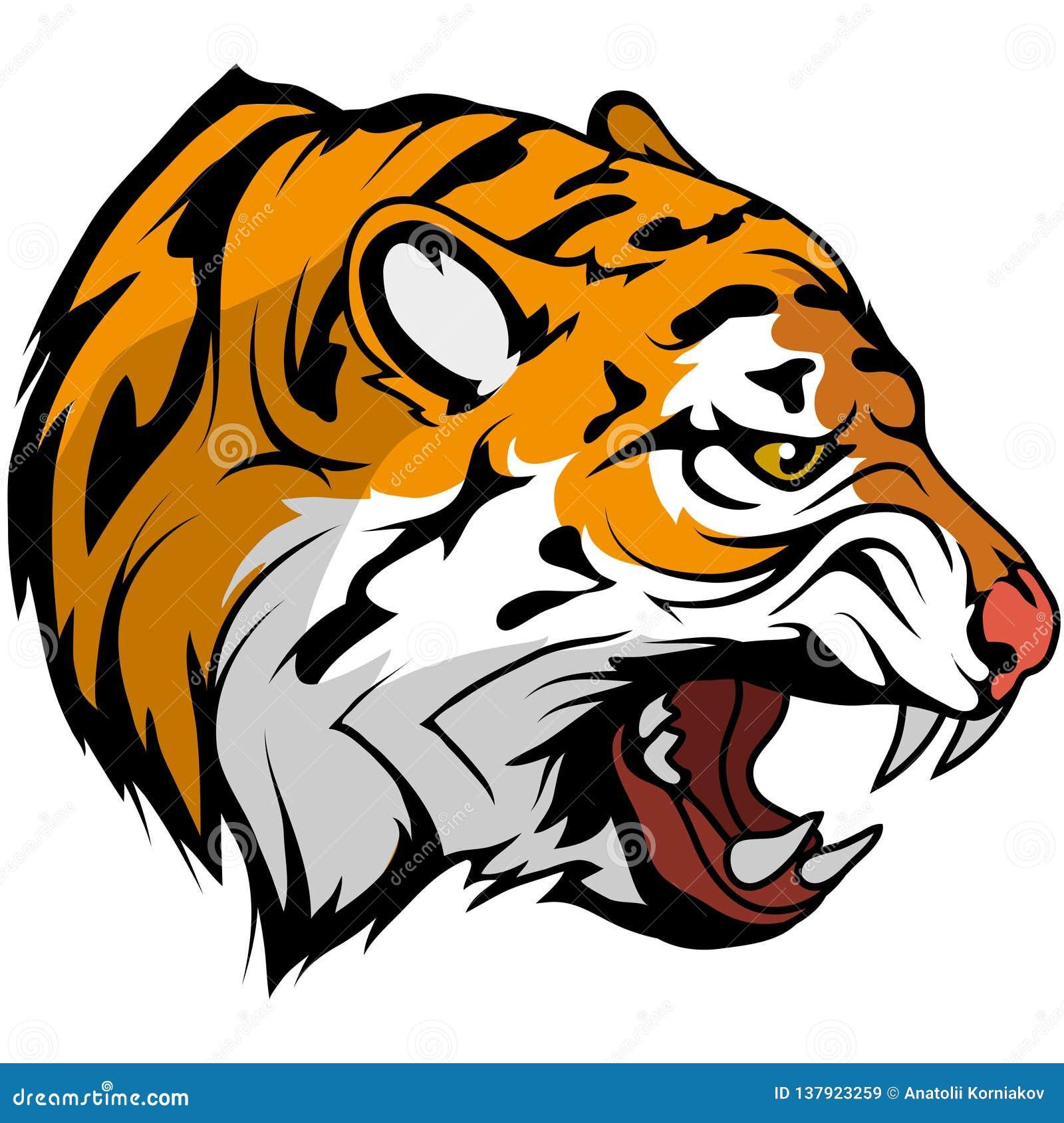 Dibujo Principal Del Vector Del Tigre Bosquejo Del Dibujo