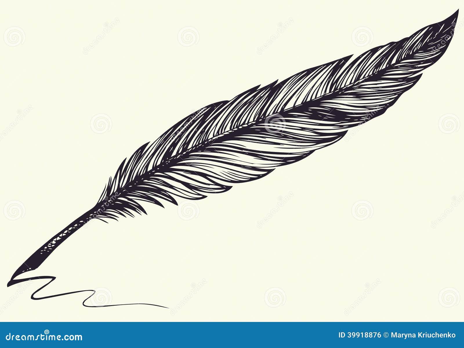 Dibujo A Pulso Del Vector De La Pluma De Pájaro Oscura