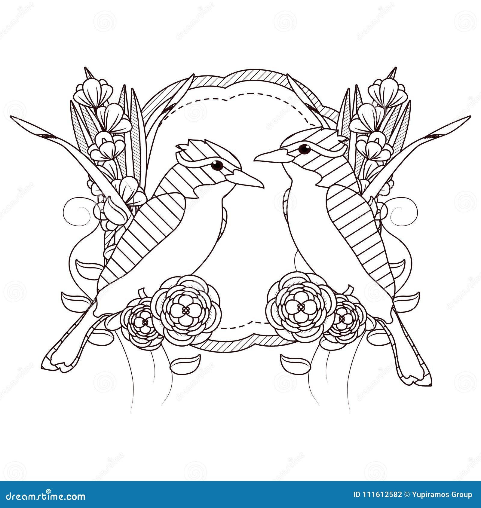 Dibujos Hermosos De Los Pájaros En Blanco Y Negro Ilustración Del