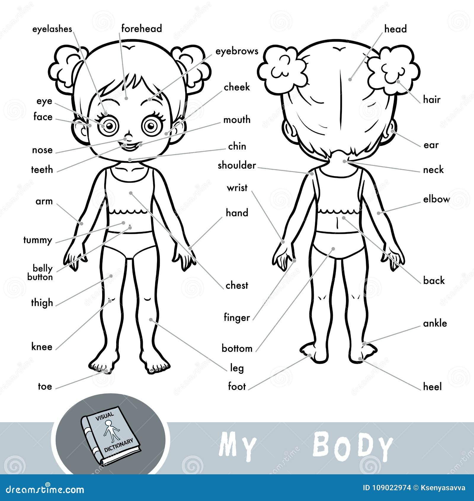 Diccionario Visual Sobre El Cuerpo Humano Mis Partes Del Cuerpo Para ...