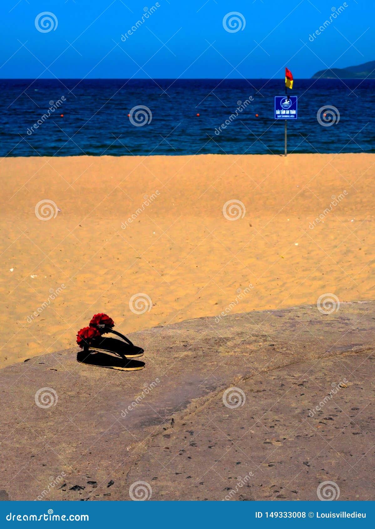 Dichte mening over wipschakelaars door het strand Vietnam van Nha Trang