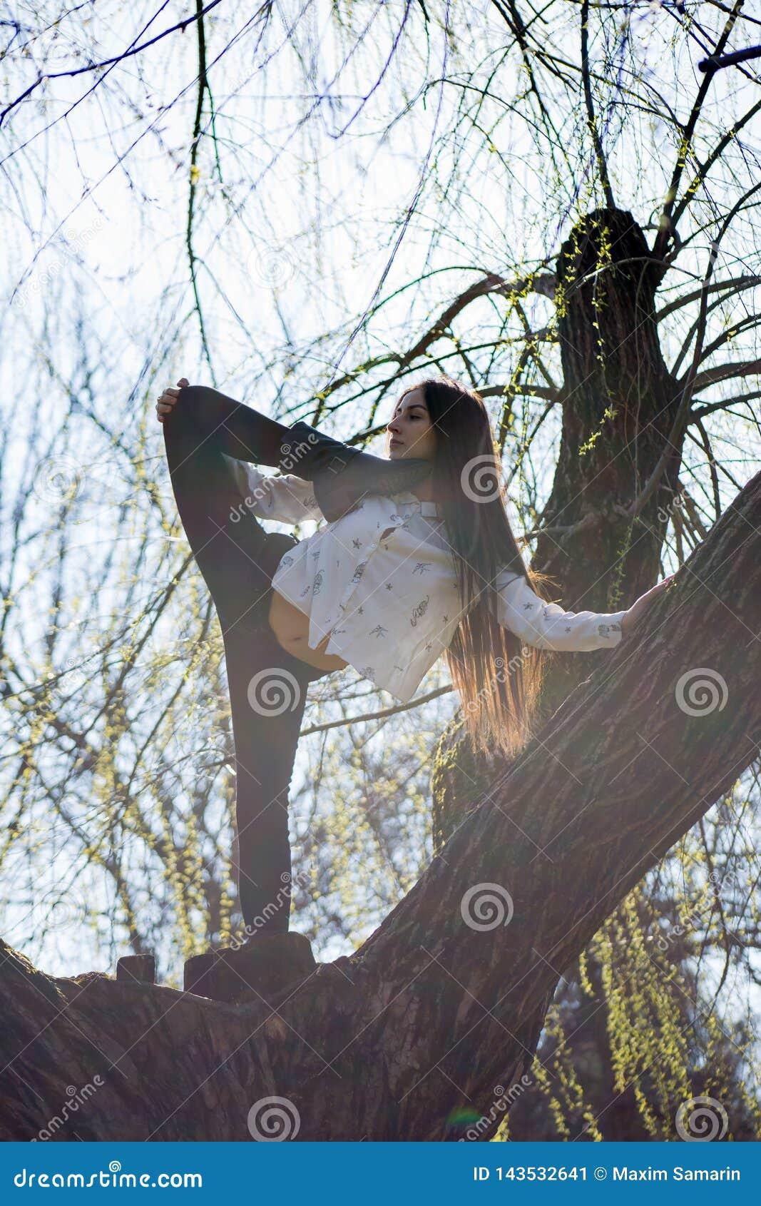Die Ansicht von unten, die netten dünnen Mädchenturner bezaubert, ist auf ungewöhnlichen Baum ohne Blätter und führt Elemente des