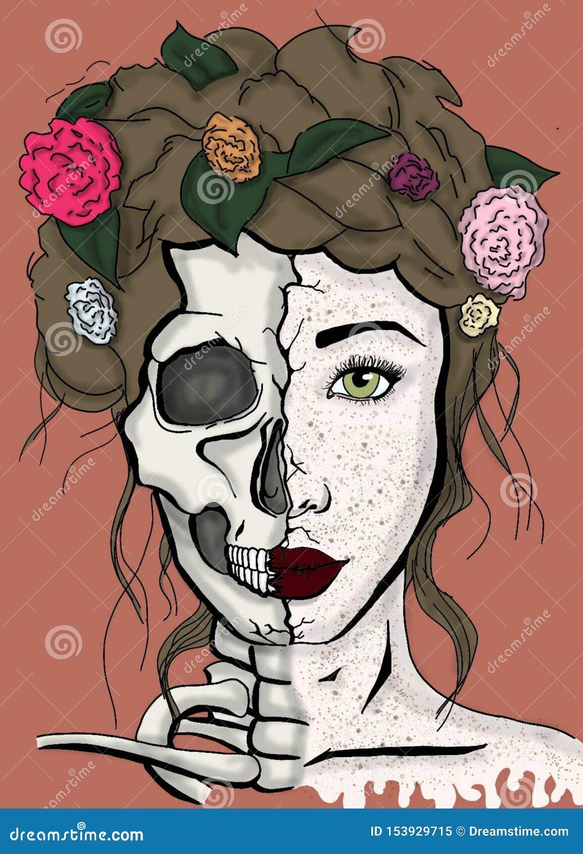 Die aufgeteilte Seite der Schönheit