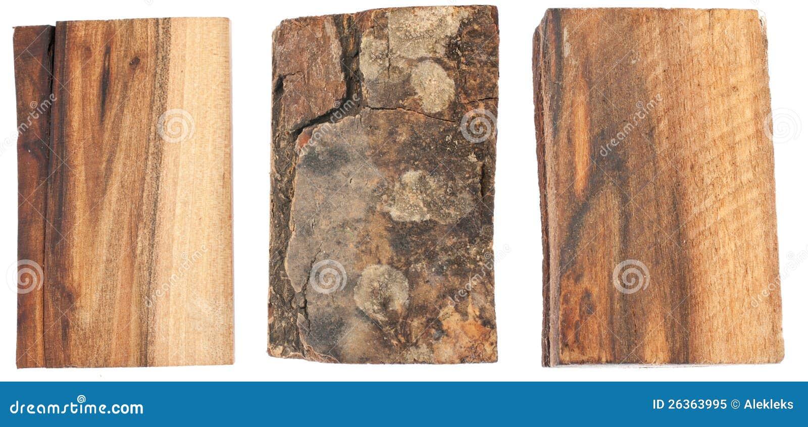 Die Beschaffenheit der Barke und des Holzes der Walnuss