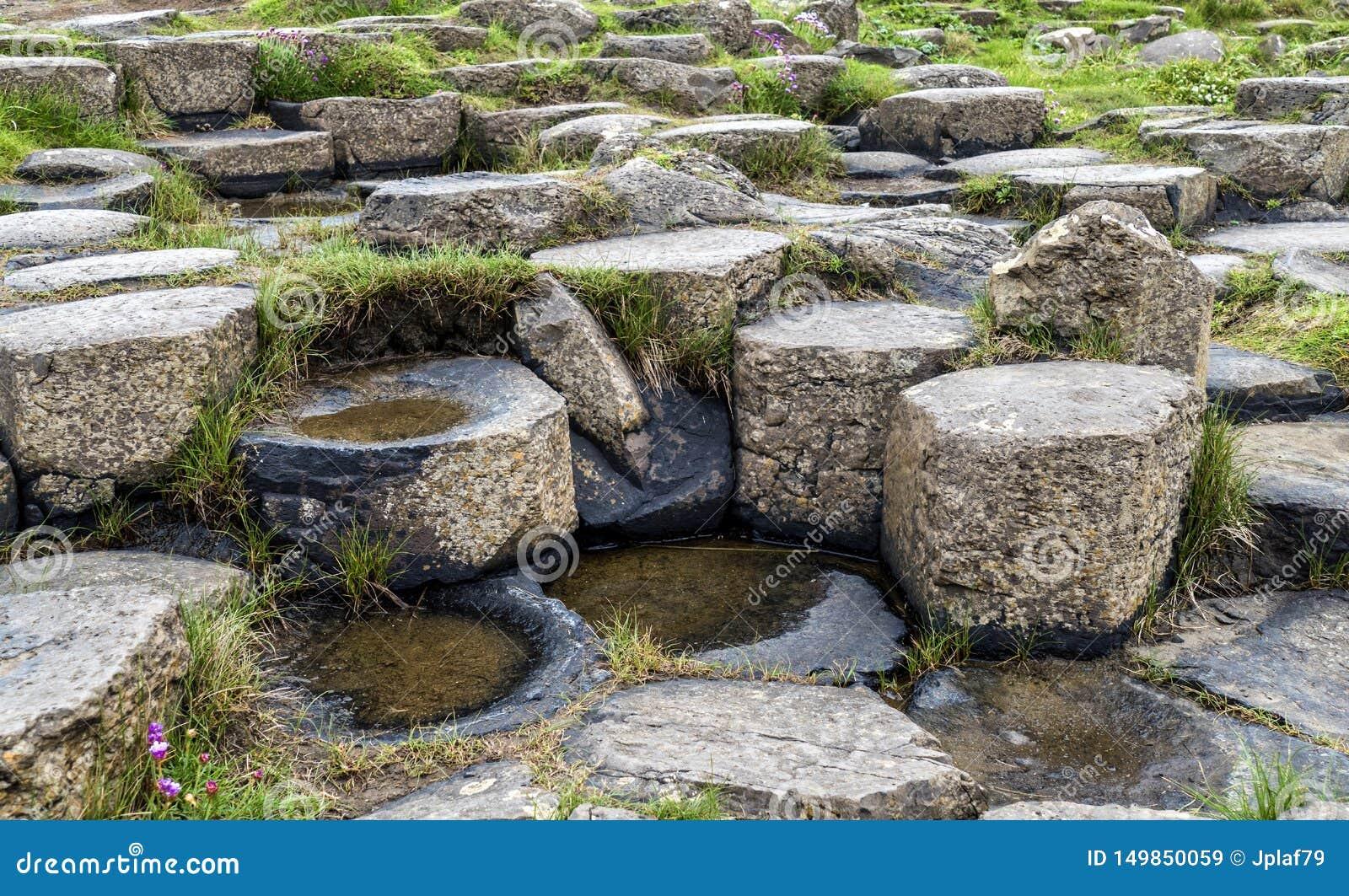 Die Damm Nord-Irland des Stein-Riesen