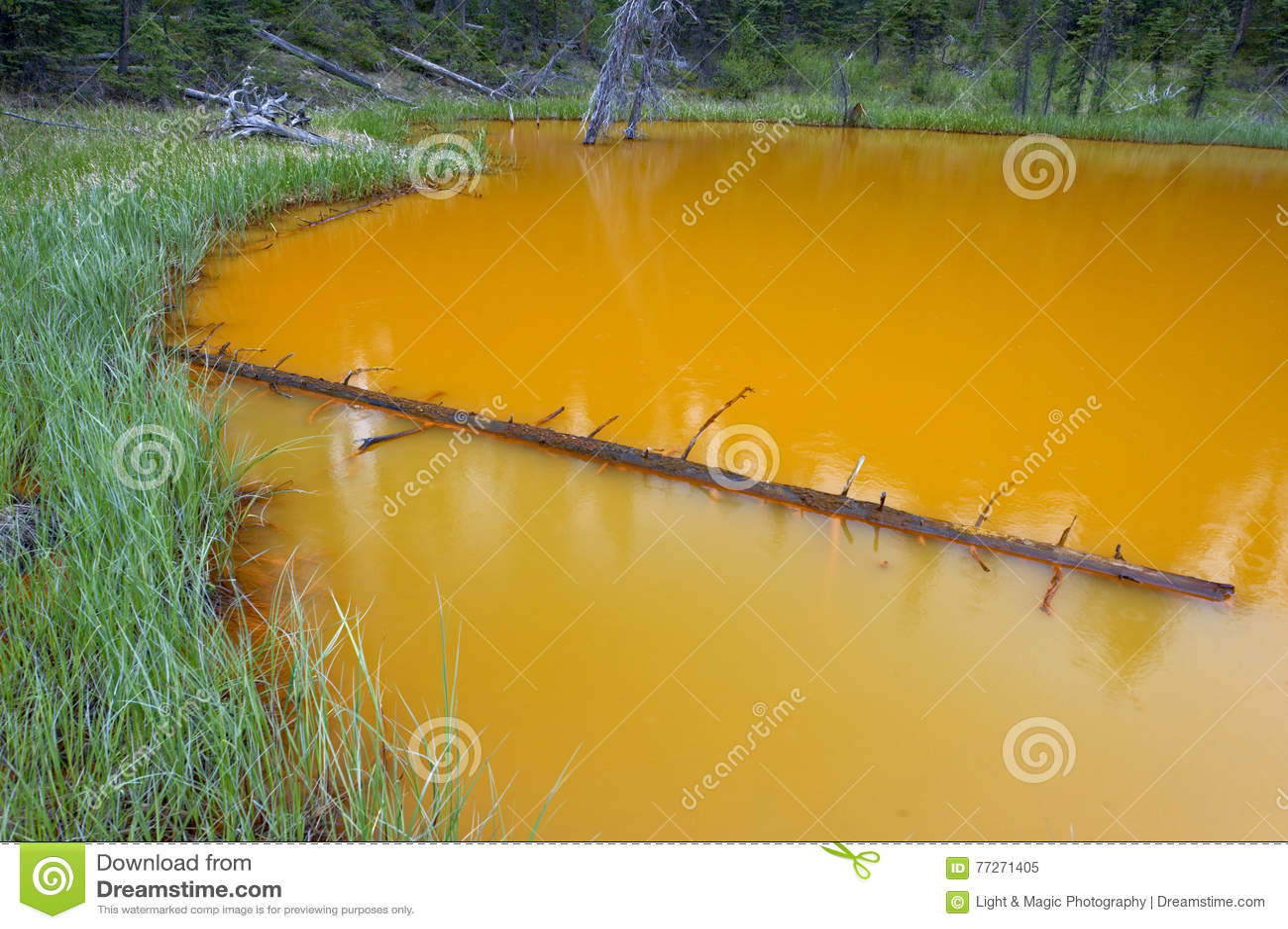 Die Farben-Töpfe, Nationalpark Kootenay