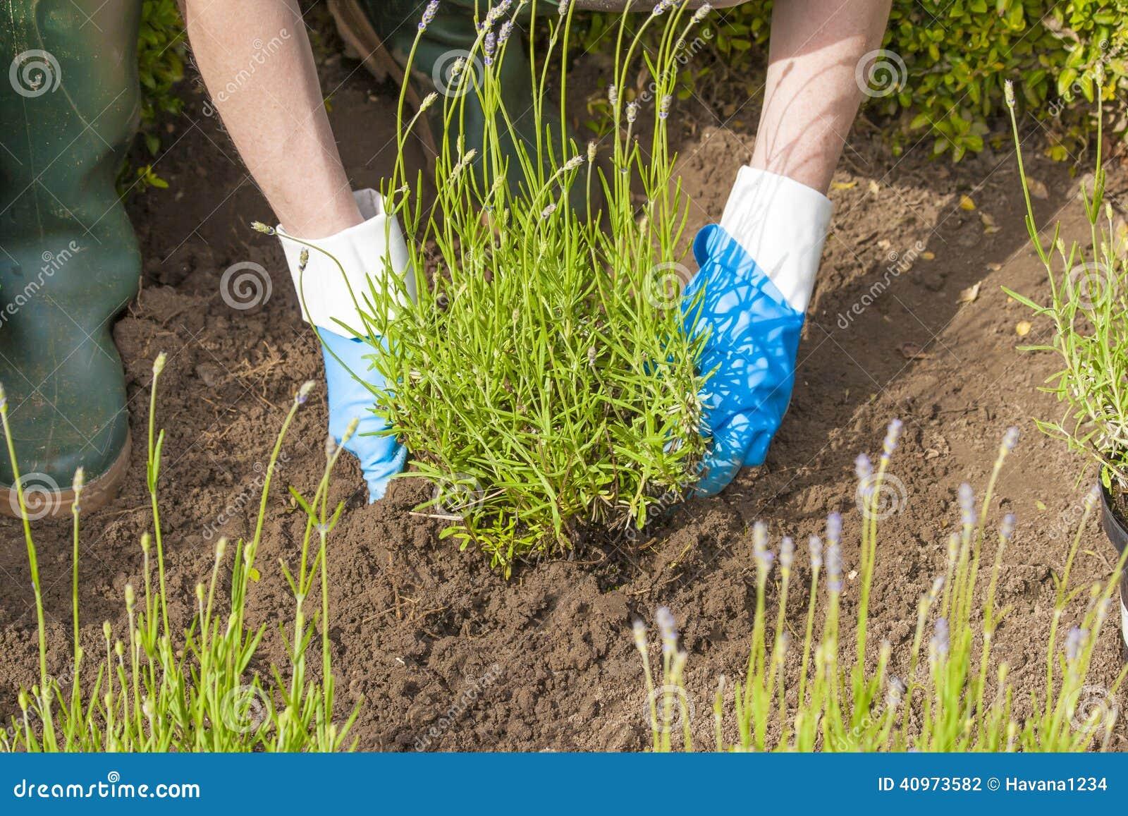 Die gartenarbeit mit handschuhen und die stiefel im for Garten arbeiten