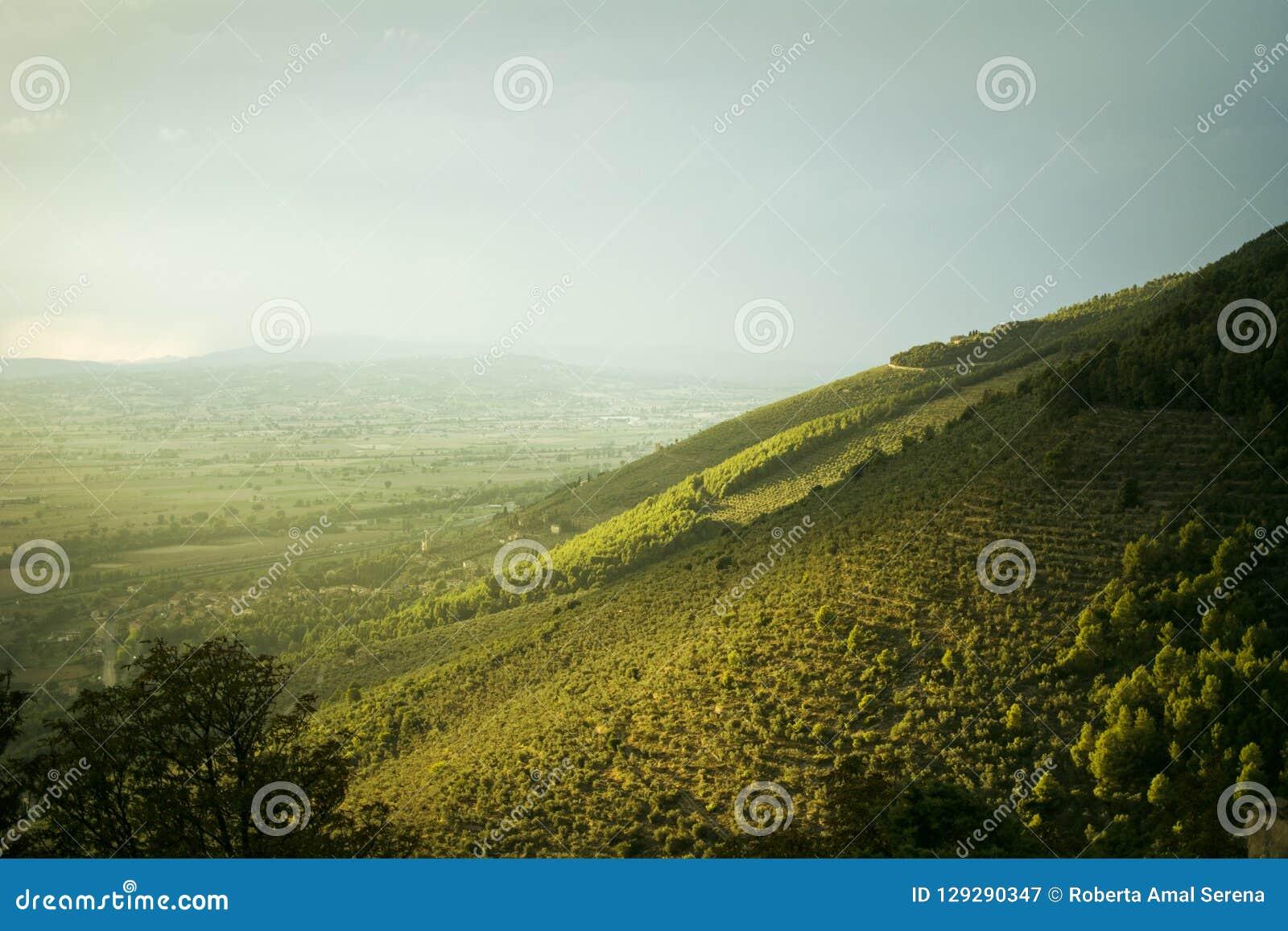 Die grüne Kante des Hügels