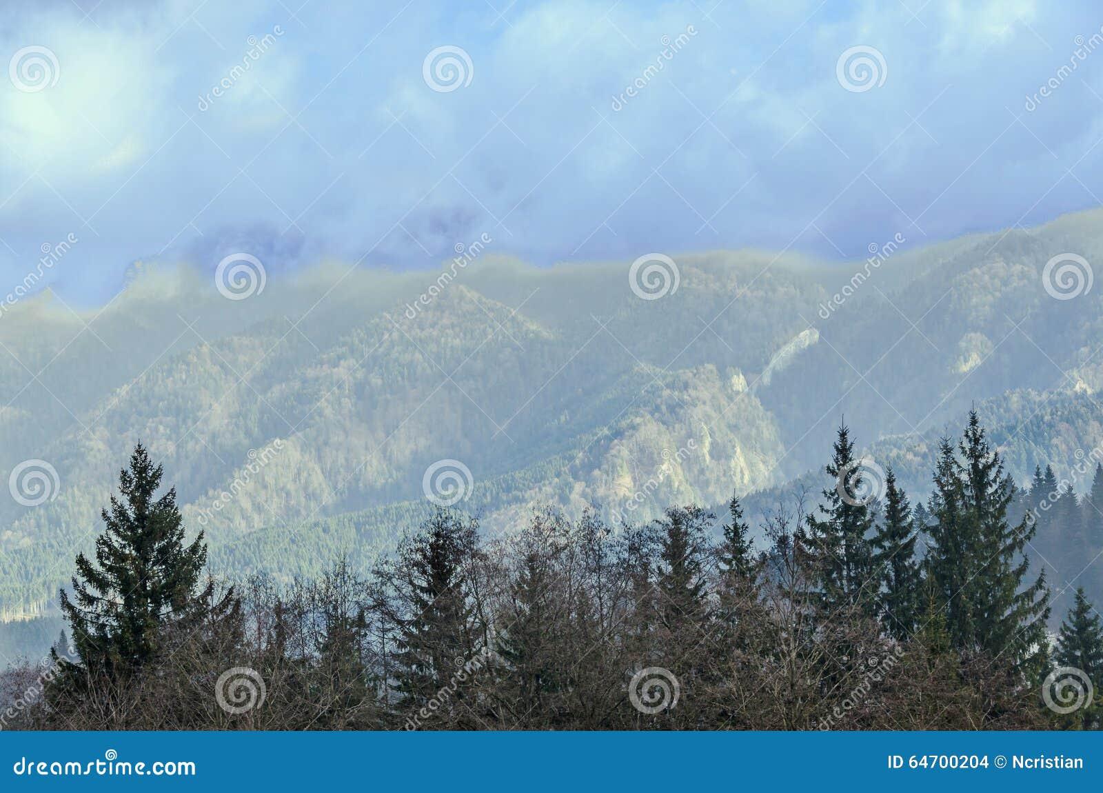 Die Karpatenberge mit Kiefernwald, farbige Bäume, bewölkter vibrierender Himmel, Herbstwinter-Zeit Predeal, Rumänien