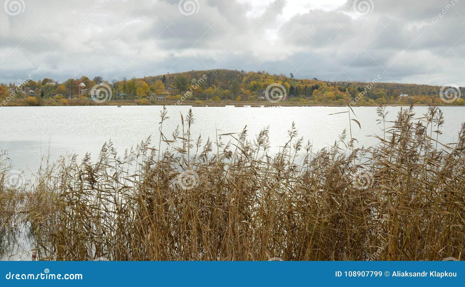 Die Oberfläche von einem großen See