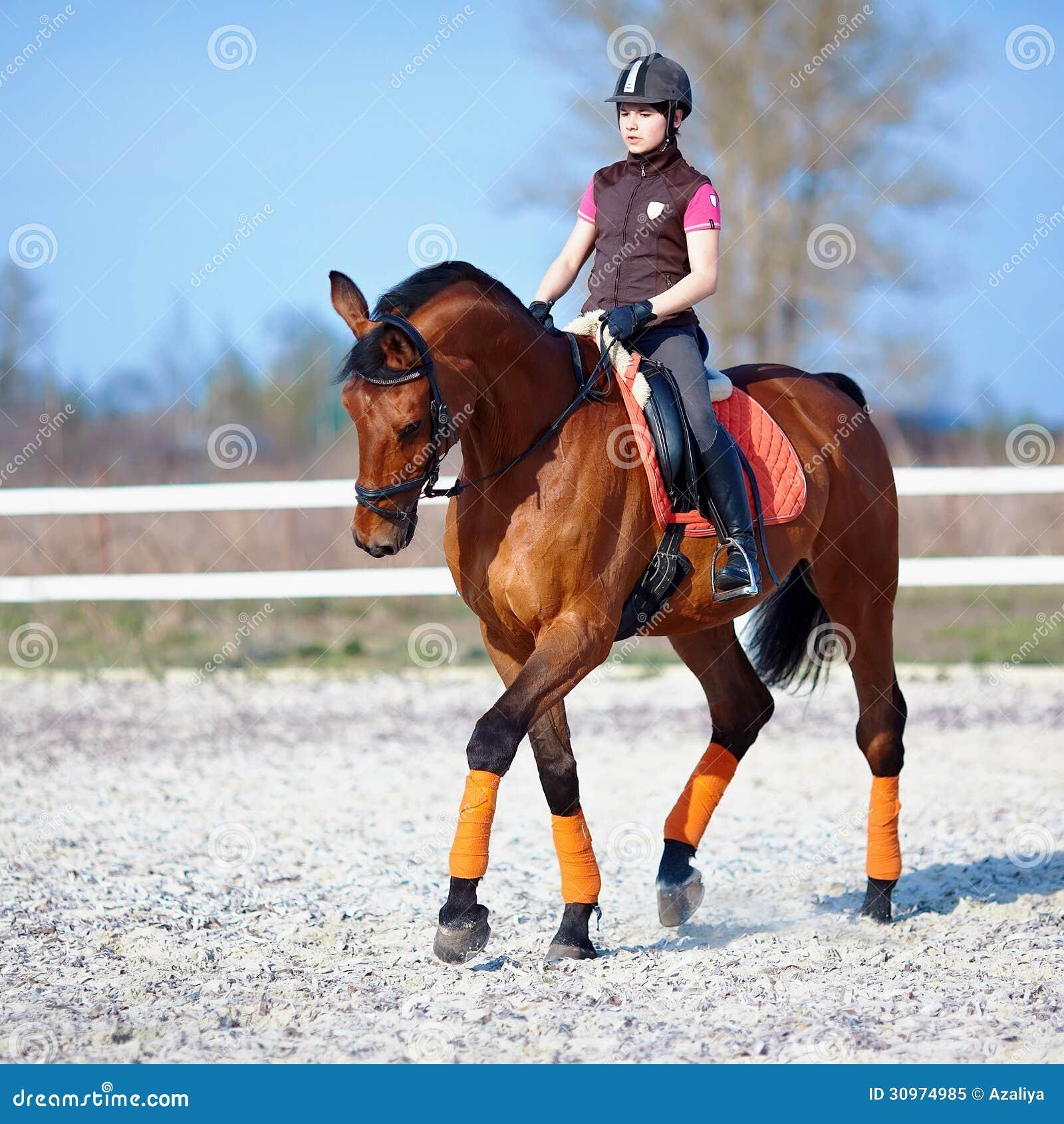 die reiterin auf einem roten pferd stockbild  bild von