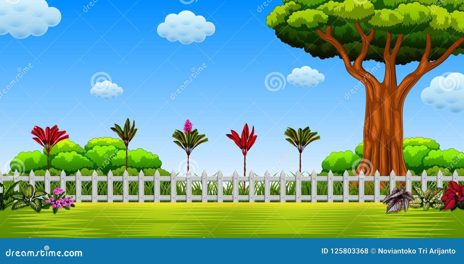 Die schöne Ansicht mit dem großen Baum und dem langen Zaun