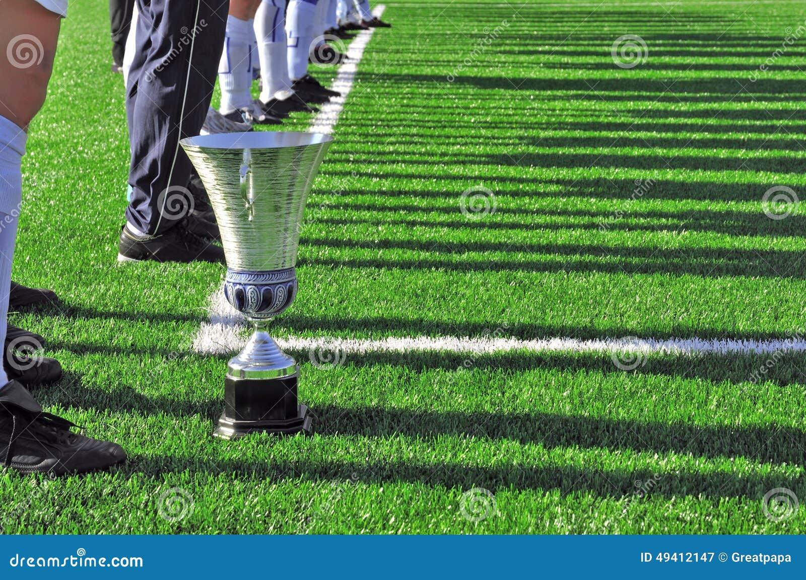 Download Die Spieler auf dem Feld stockbild. Bild von field, grün - 49412147