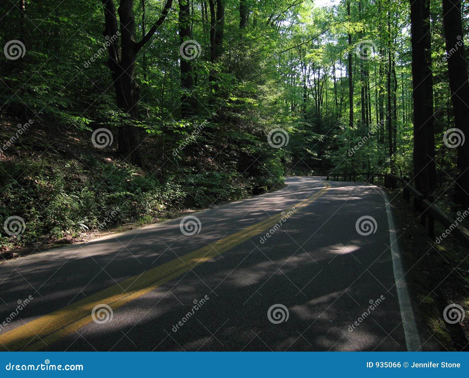 Die Straße weniger genommen