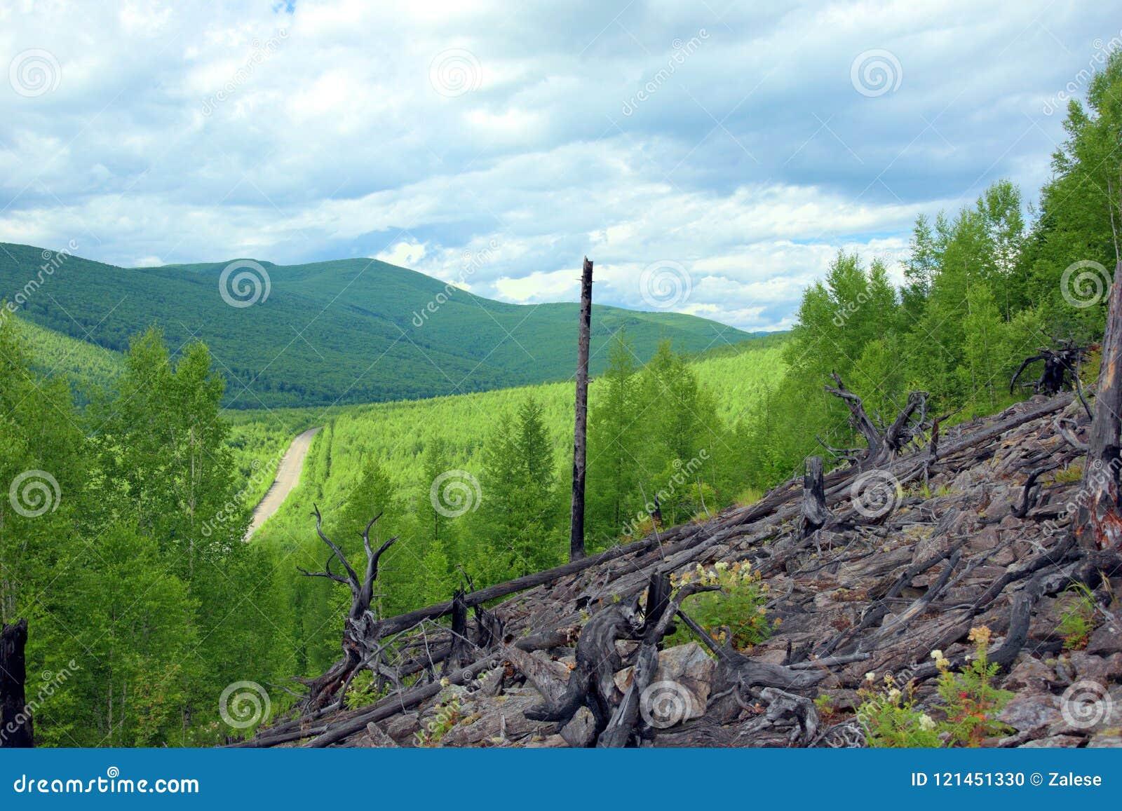 Die Straßendurchläufe zwischen den grünen Hügeln