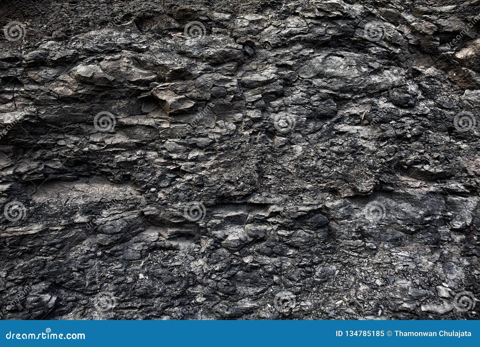 Die tektonische Schicht
