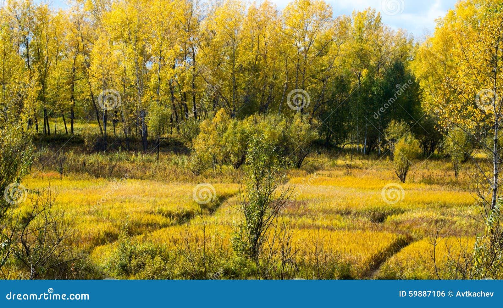 Die Vision des Herbstes