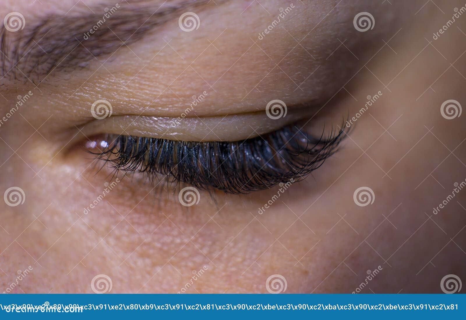 Die Wimpern der Schönheiten