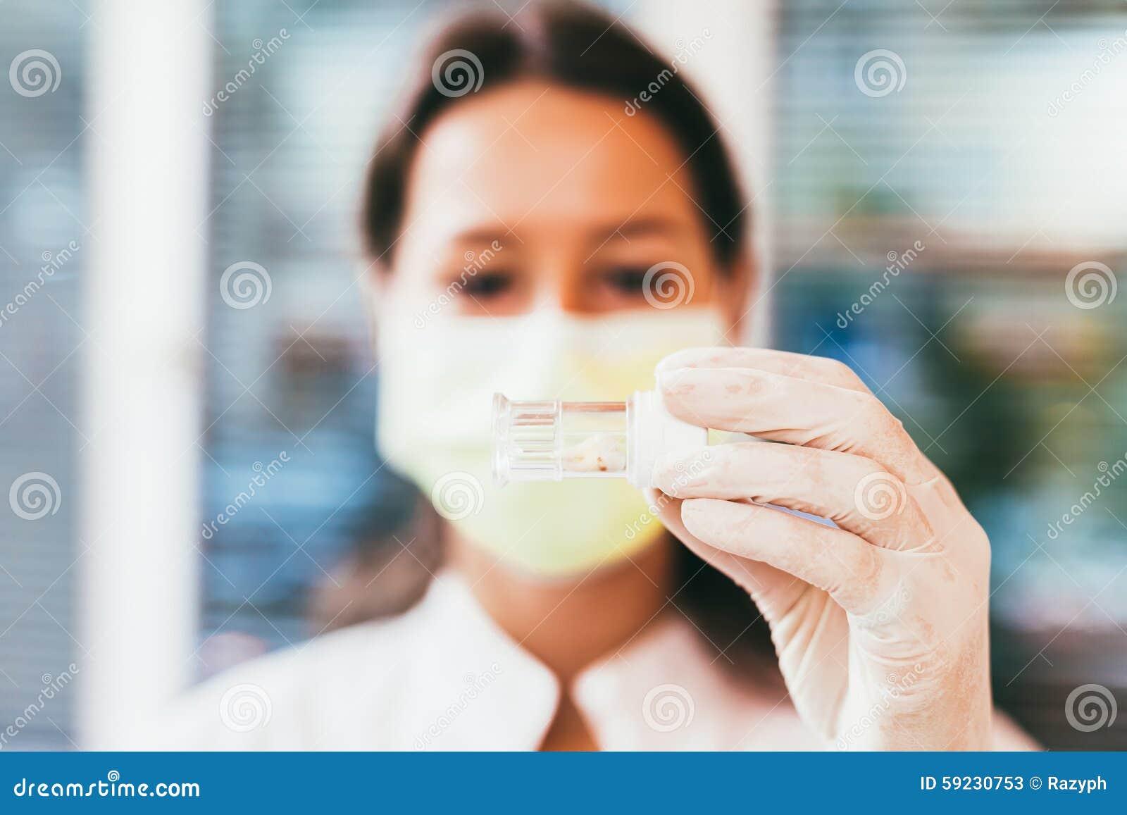 Diente en una caja dental