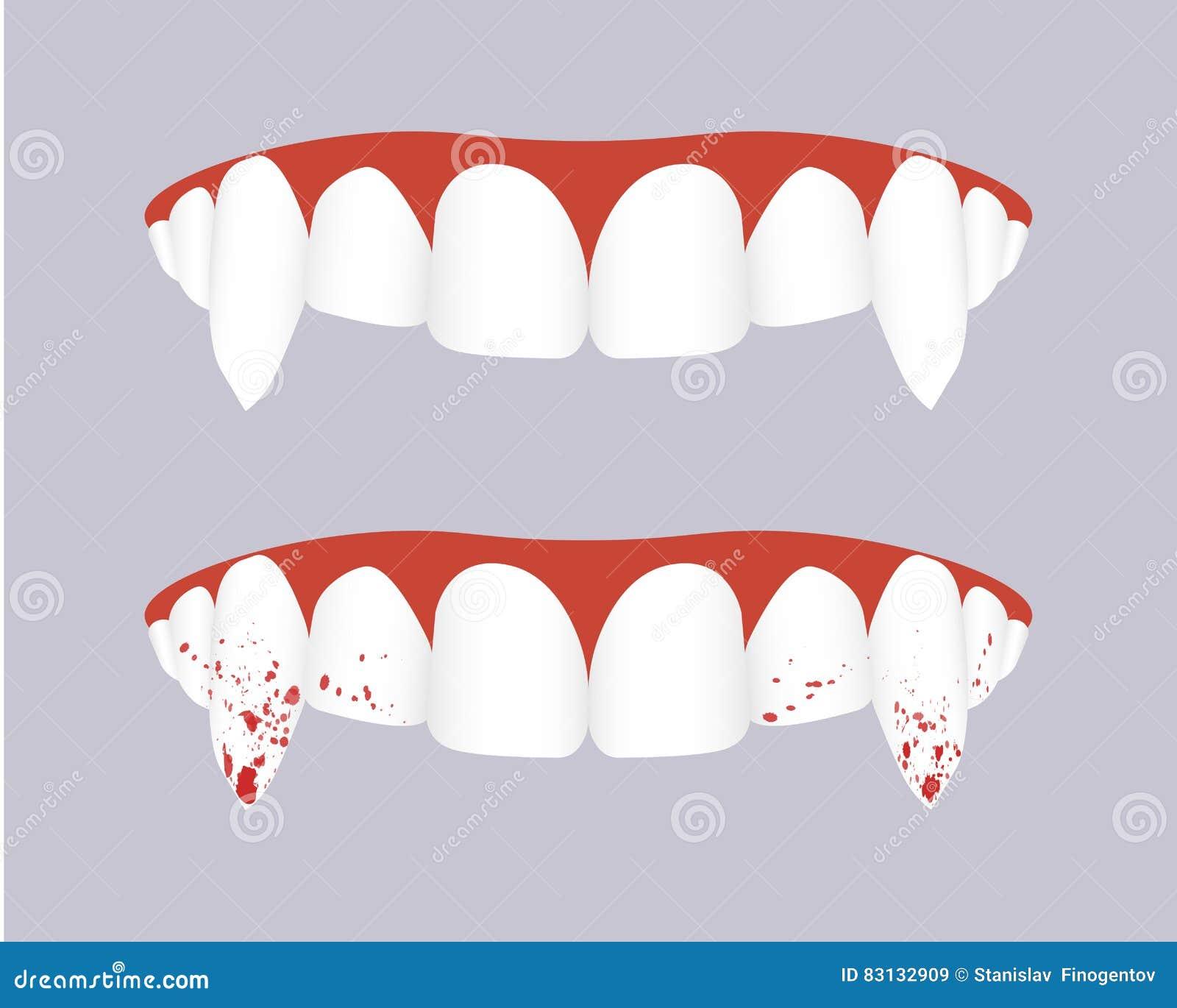 Dientes del vampiro con los colmillos sangrientos Ilustración del vector