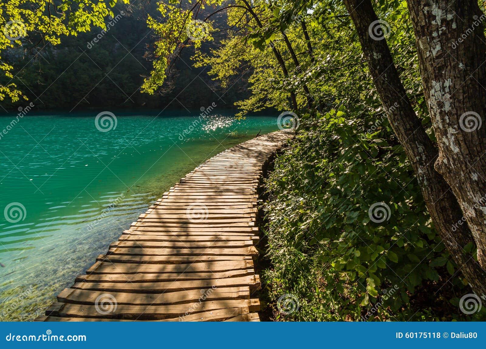Diepe bosstroomweg met glashelder water in de zonneschijn De Meren van Plitvice, Kroatië
