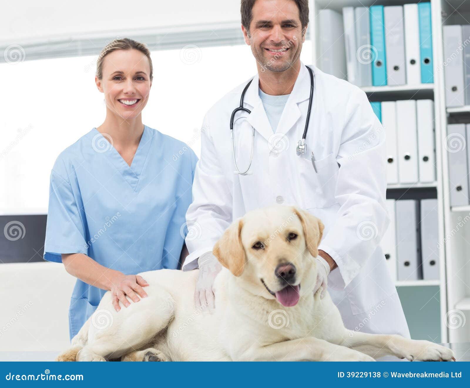 Dierenartsen met hond in kliniek
