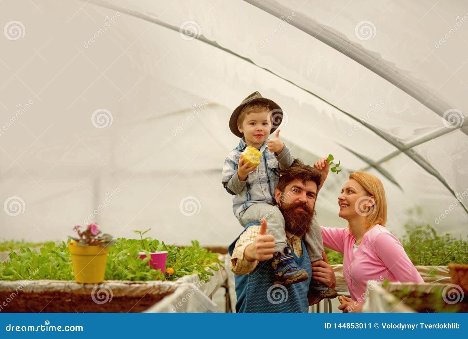 Dieting nourriture saine de dietingand suivre un r?gime avec la consommation d organig Concept suivant un r?gime famille avec l u