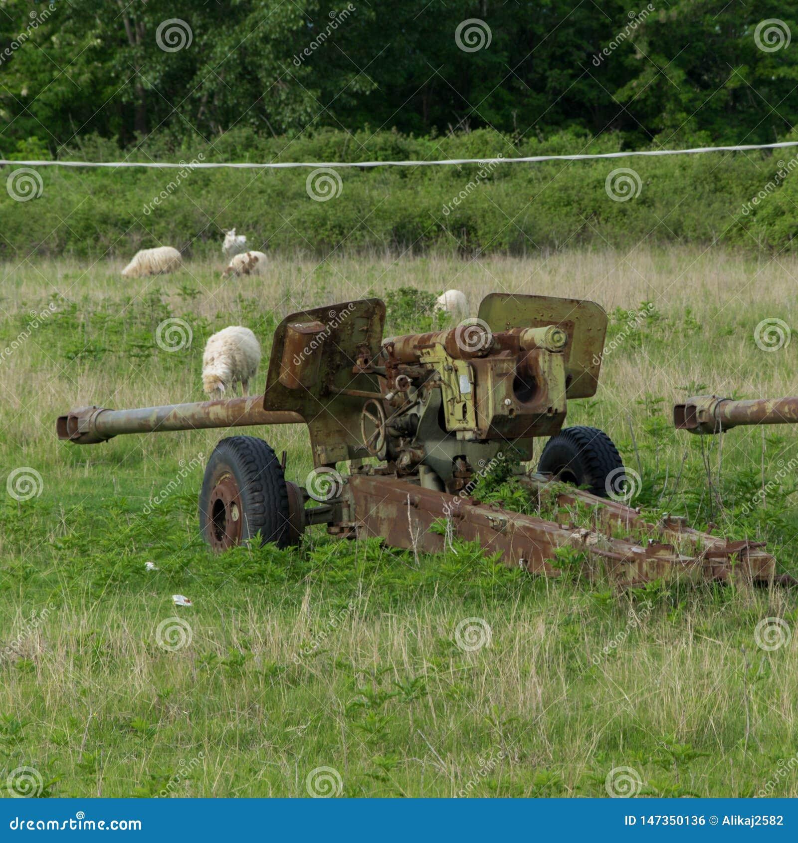 Difesa contraerea dell contro-aria o di guerra, abbandonata Relitti di vecchi veicoli che appartengono all esercito albanese nel