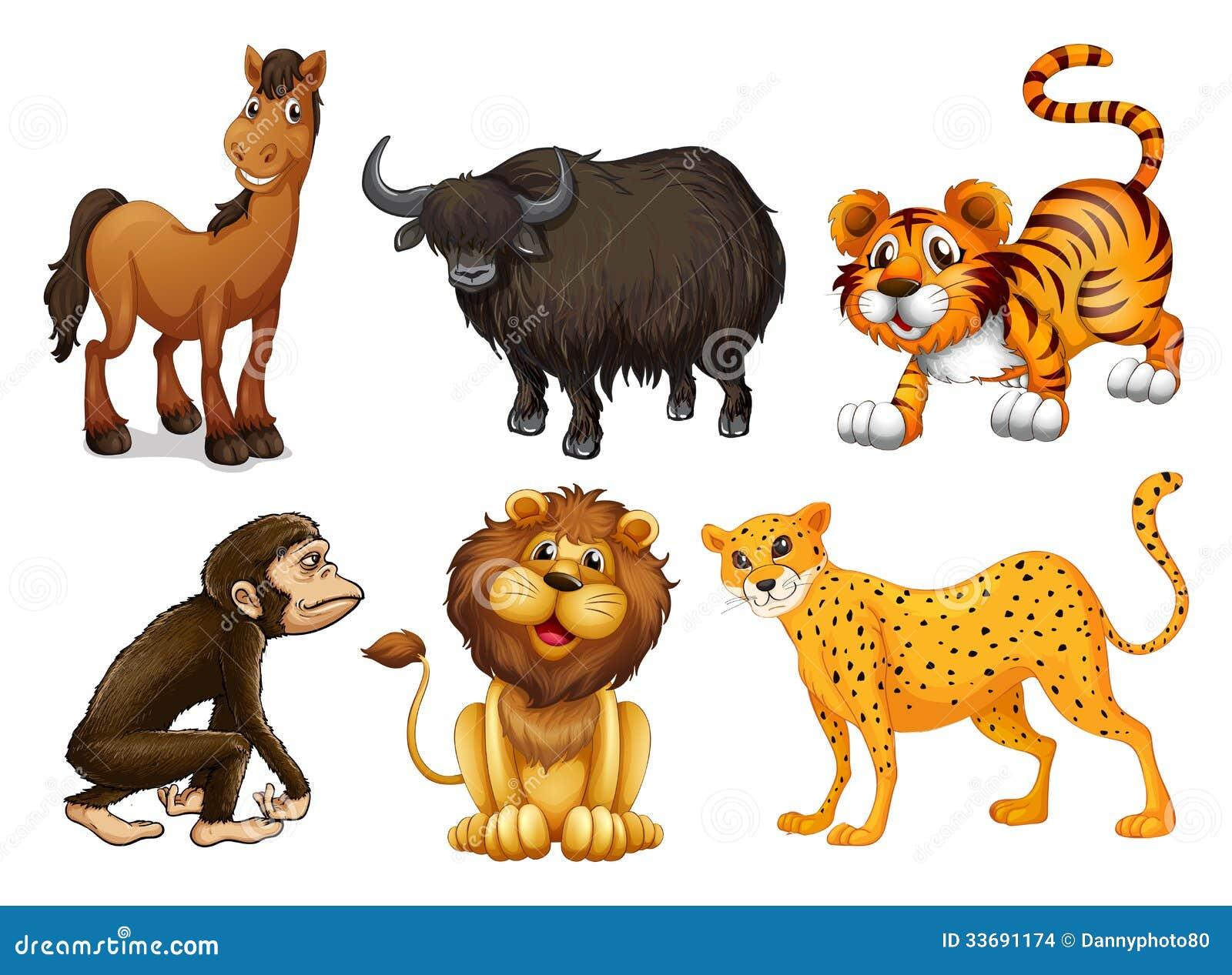 Différents genres d animaux quadrupèdes