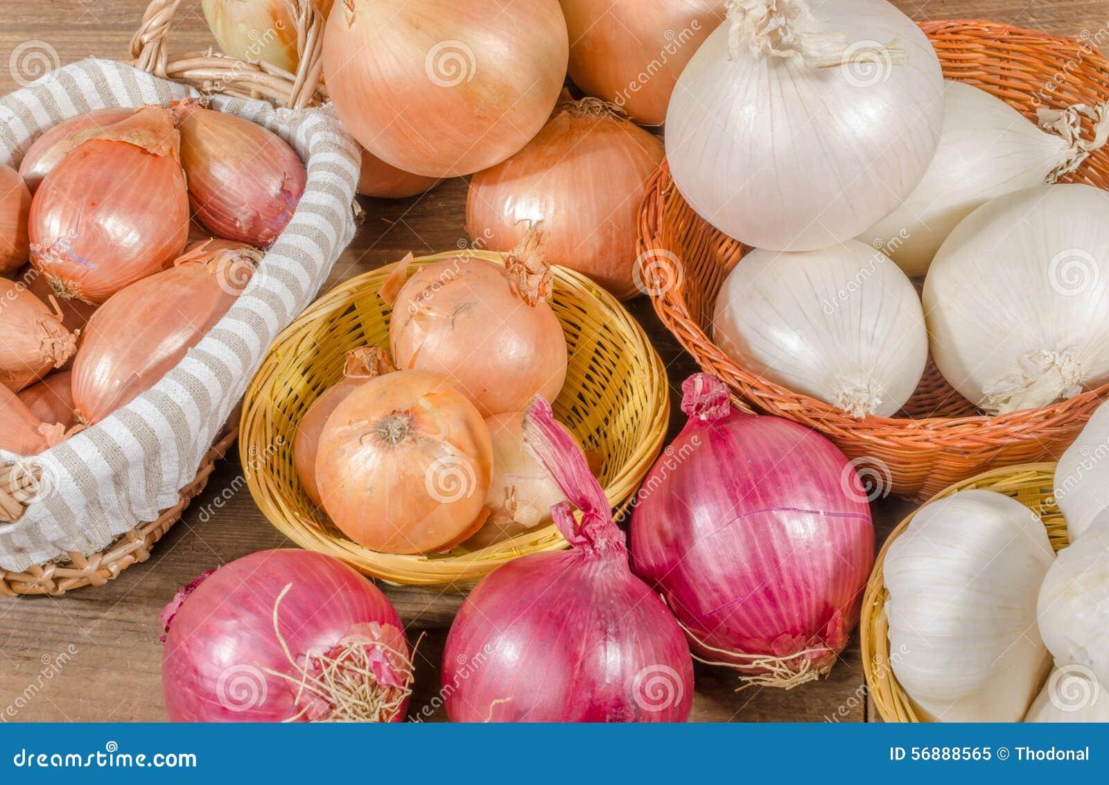 Différents Types Des Oignons, De L'ail Et D'échalotes Image stock - Image du frais, échalotes ...