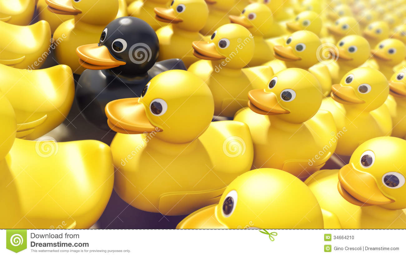 Black rubber ducky unique among yellow rubber duckies.