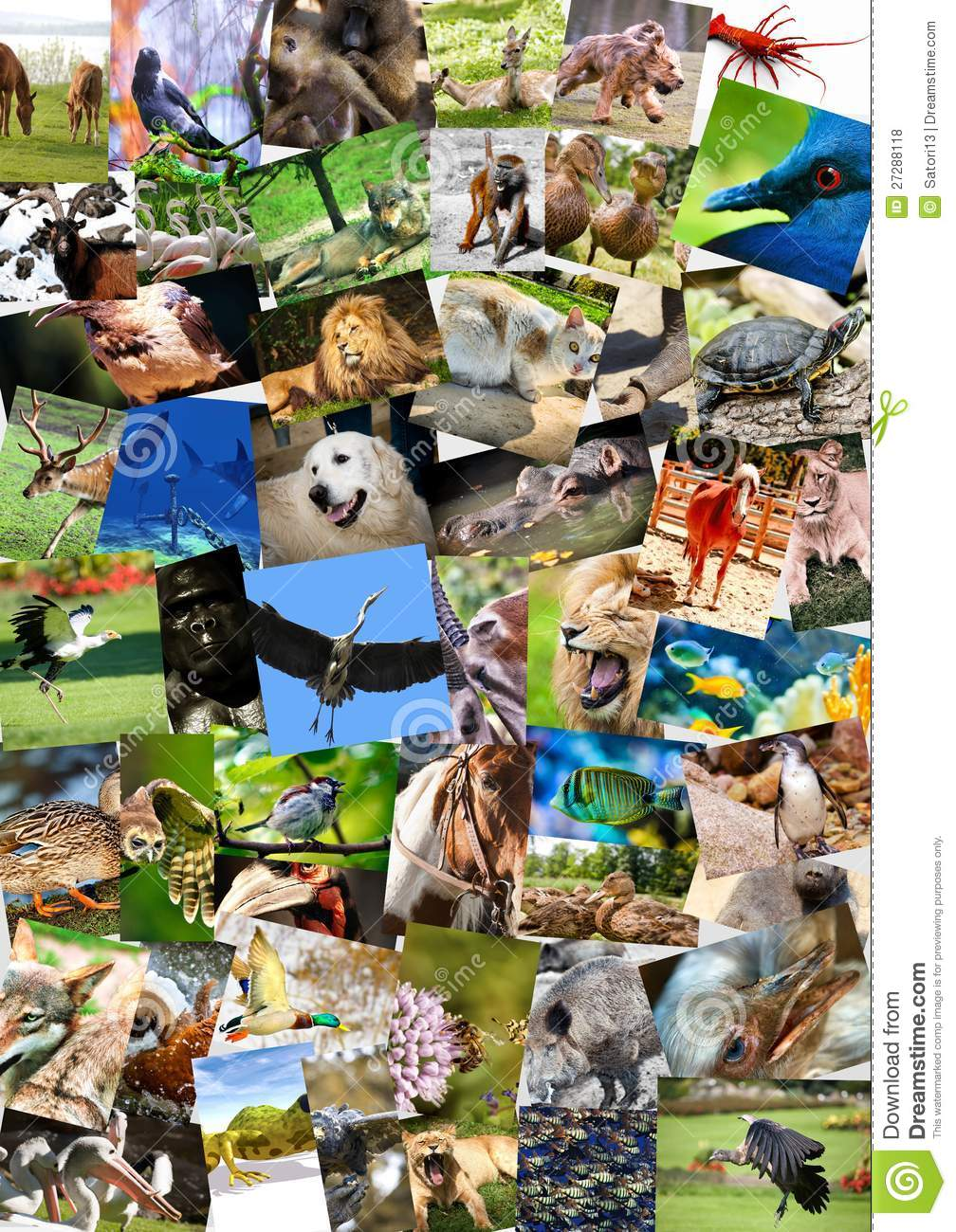... Collage On Postcards Royalty Free Stock Photos - Image: 27288118