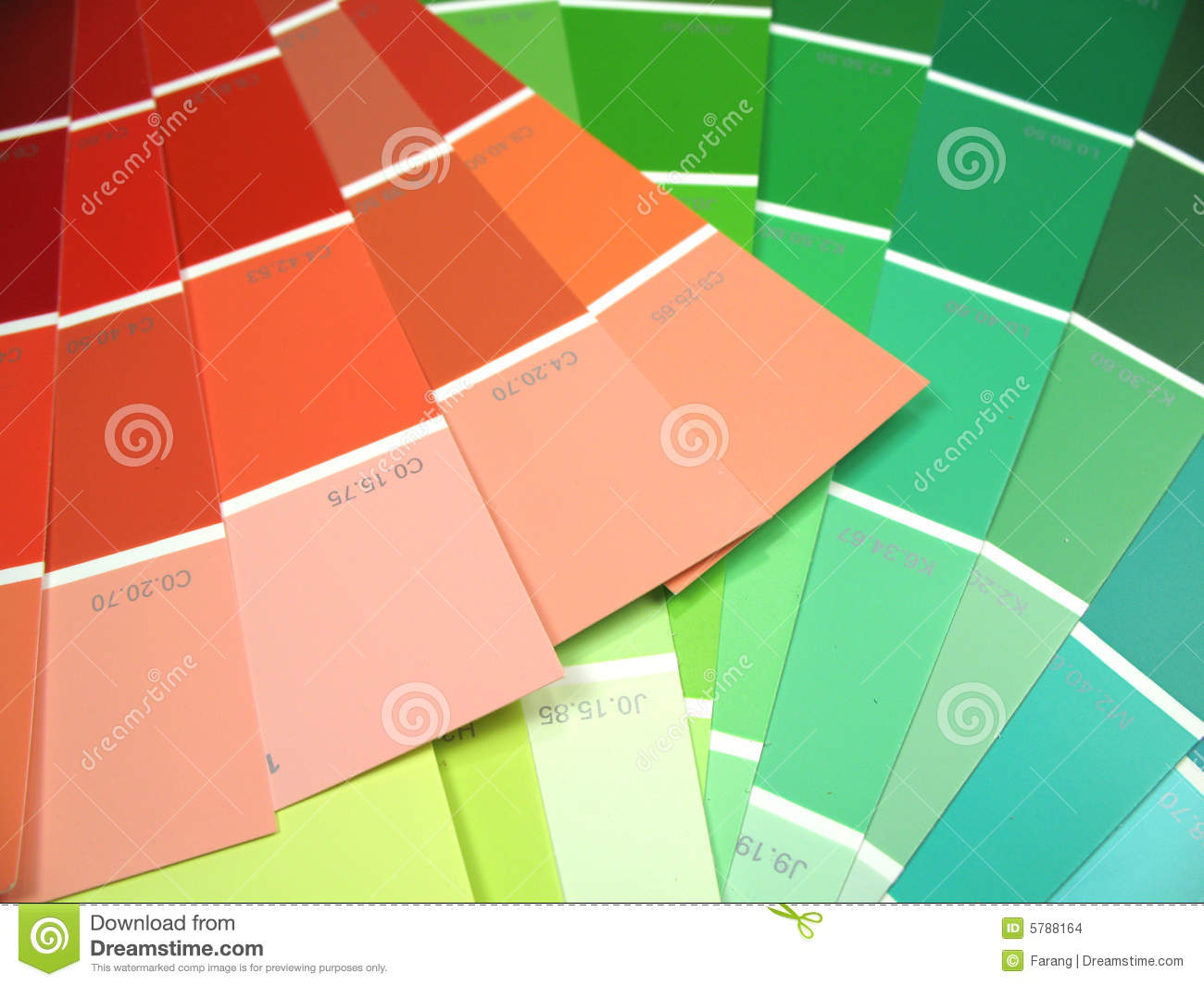 Different color swatches