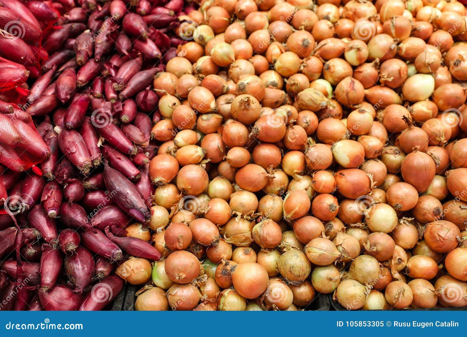 onions bulk