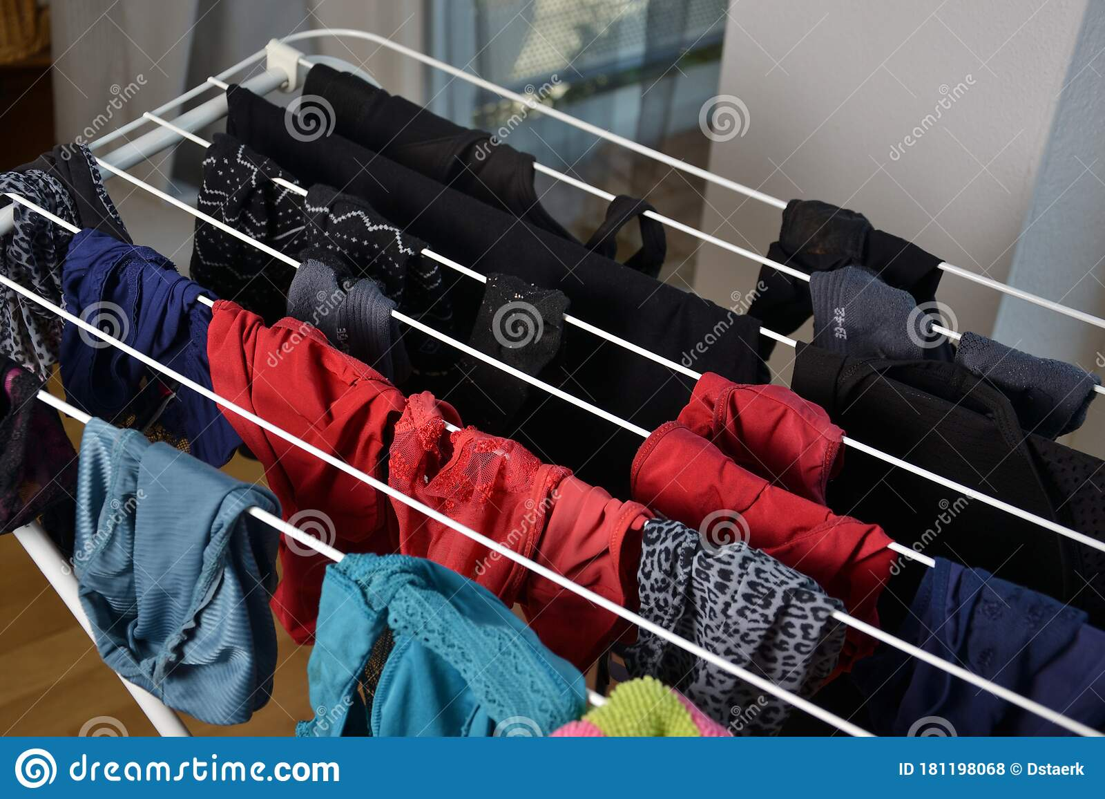 Different Freshly Clothes Hanging On The Clotheshorse For Drying Stock Photo Image Of Dryer Drier 181198068