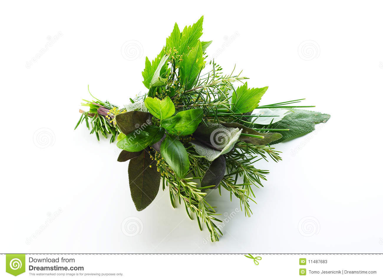 Different herbs royalty free stock image image 16265346 - Different Herbs Stock Photos Image 11487683 Wallpaper Gallery Image Gallery Different Herbs