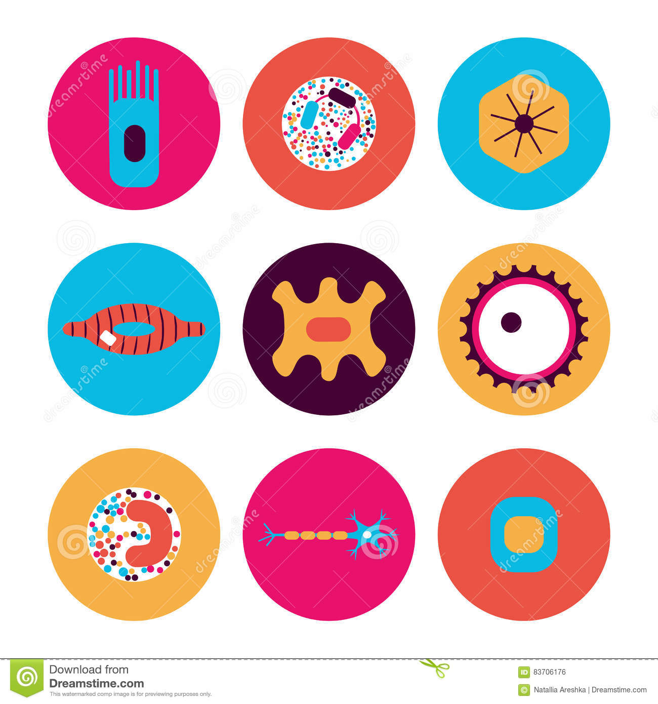 Different Human Cell Types Stock Vector Illustration Of Medical