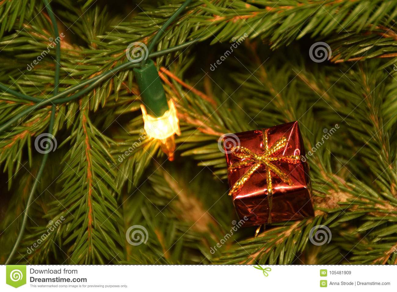 Christmas Tree Lights And Decorations On Fir Tree Branches. Stock ...