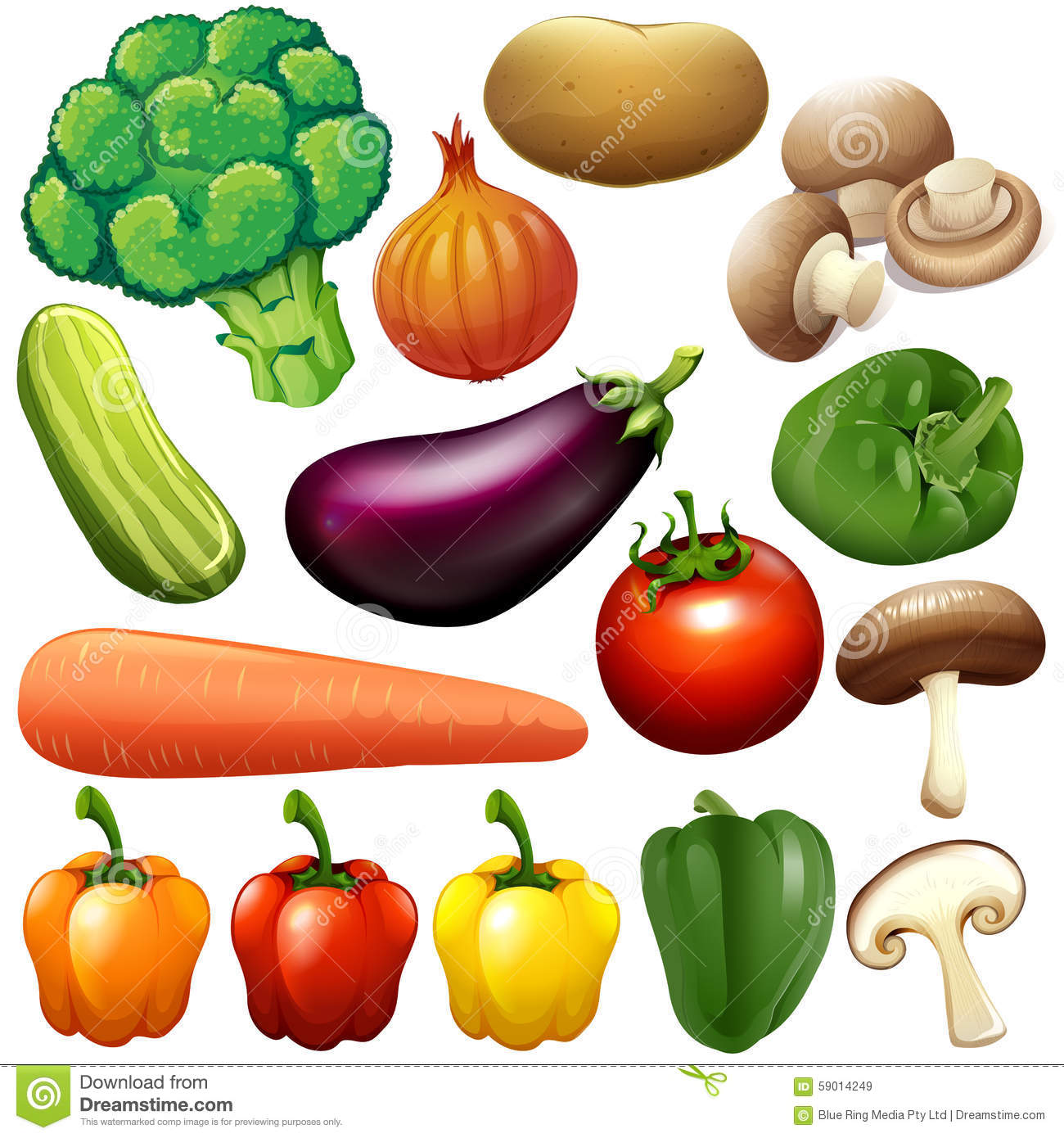 different kind of fresh vegetables stock illustration fungi clipart realistic graphic fungi clipart realistic graphic