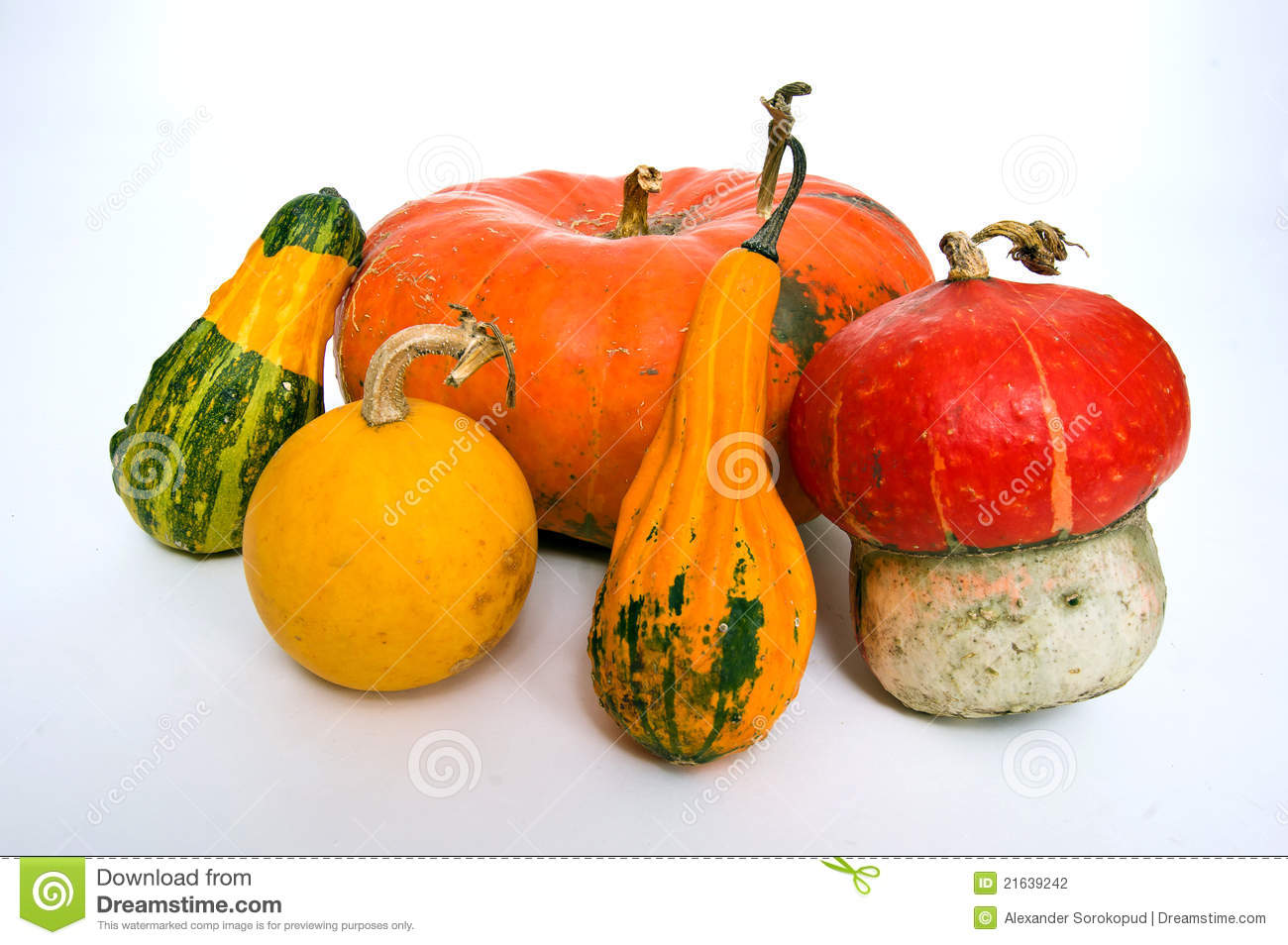 Different Kind Of Pumpkins Stock Photography - Image: 21639242