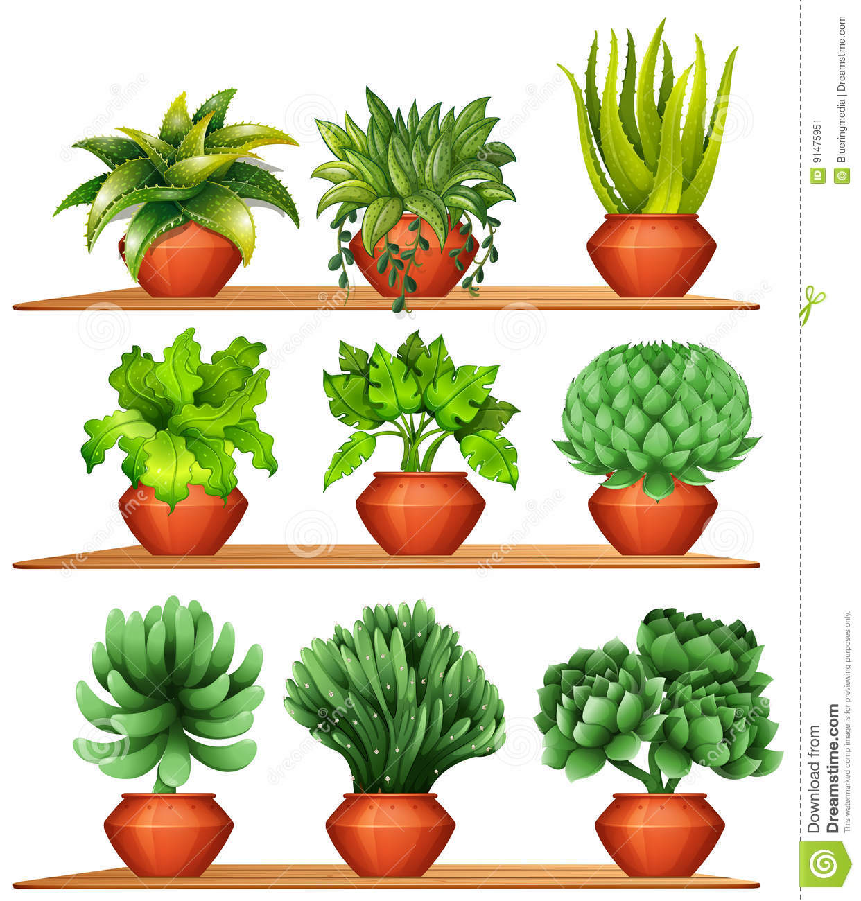 Different kinds of plants in clay pots stock vector for Different kinds of plants