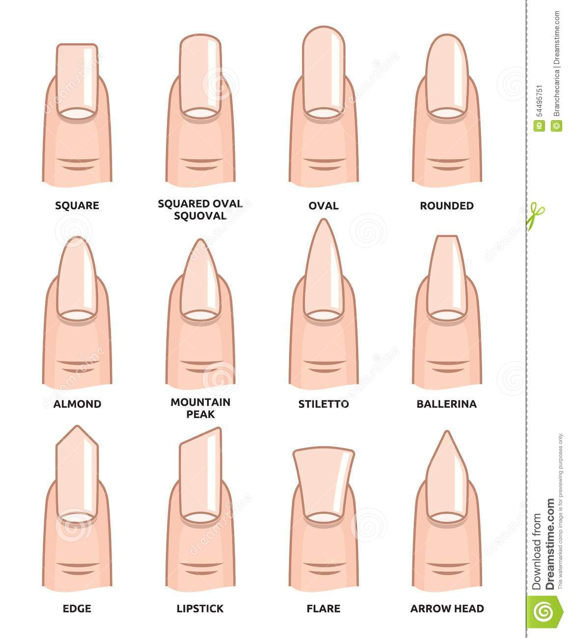 Different nail shapes fingernails fashion trends stock illustration image 54495751