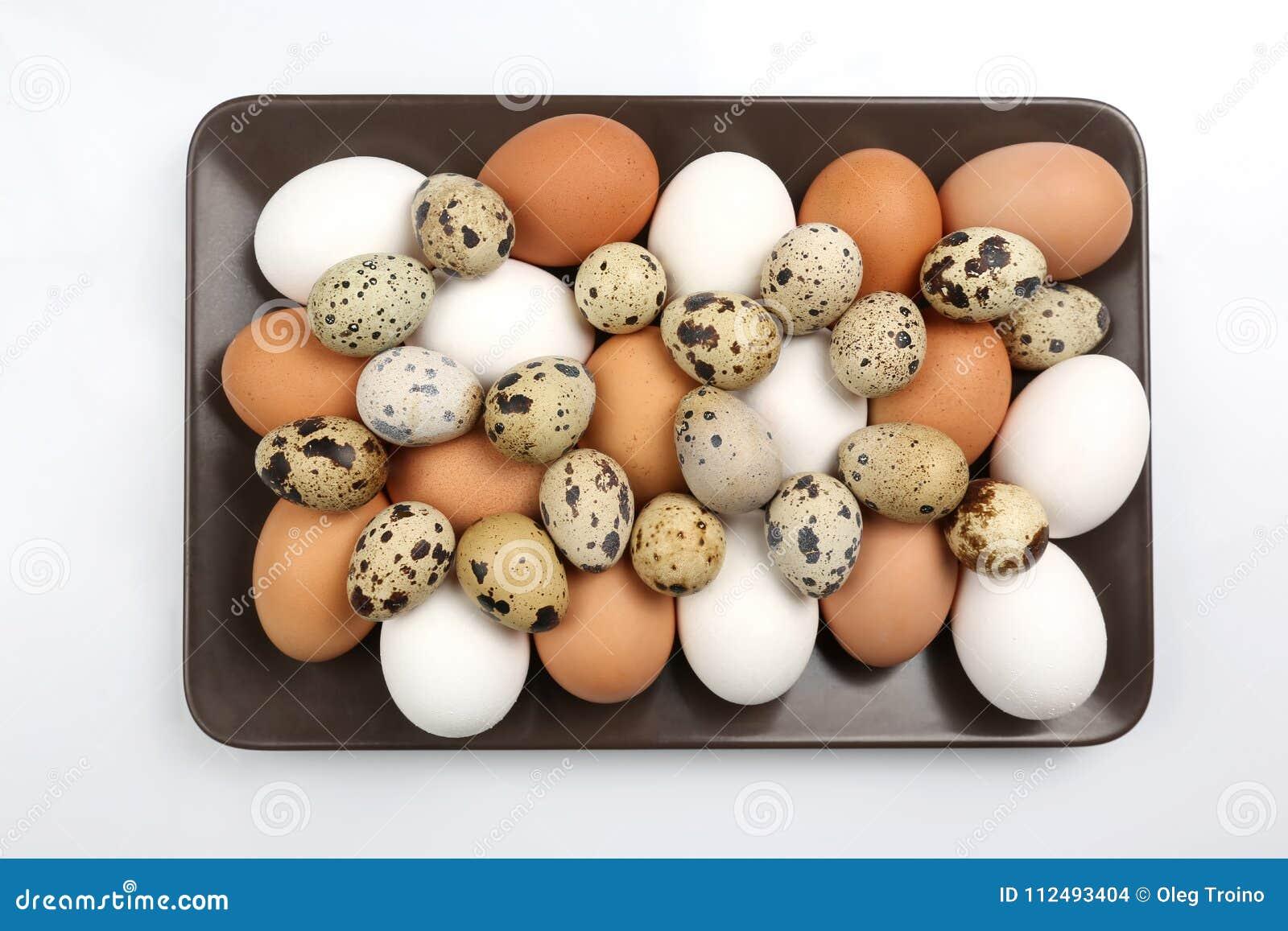Вместе с яйцами #2