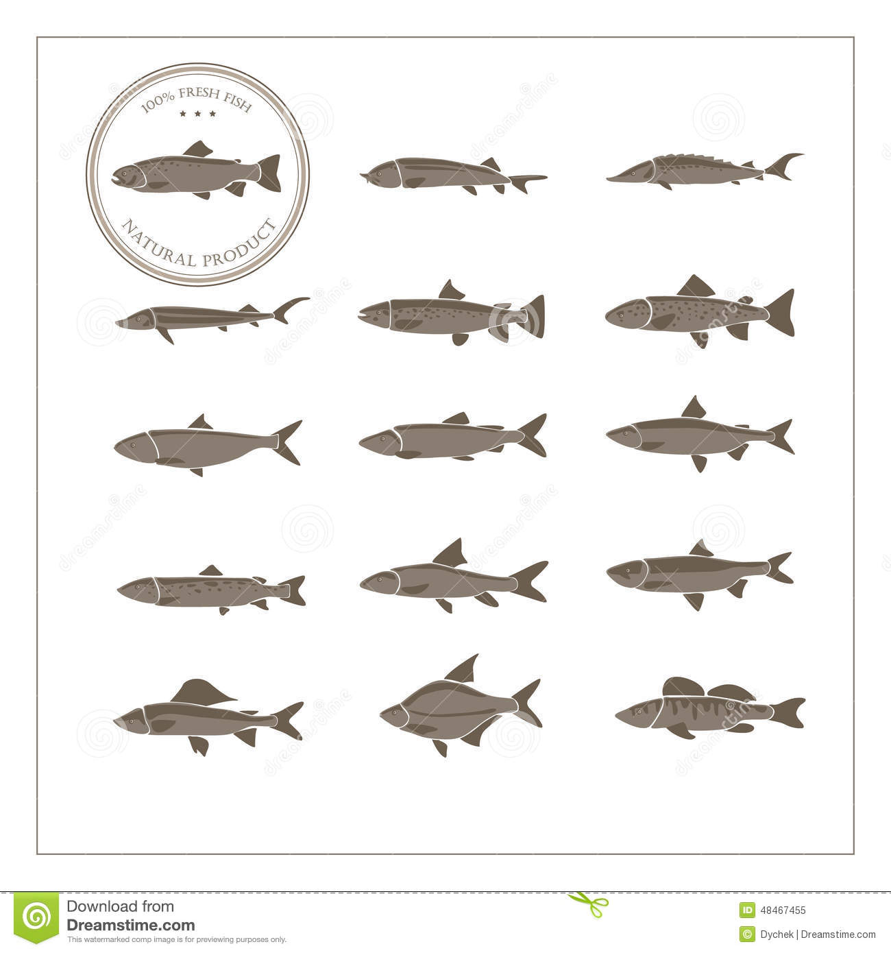 Different species of fish stock vector image 48467455 for White fish types