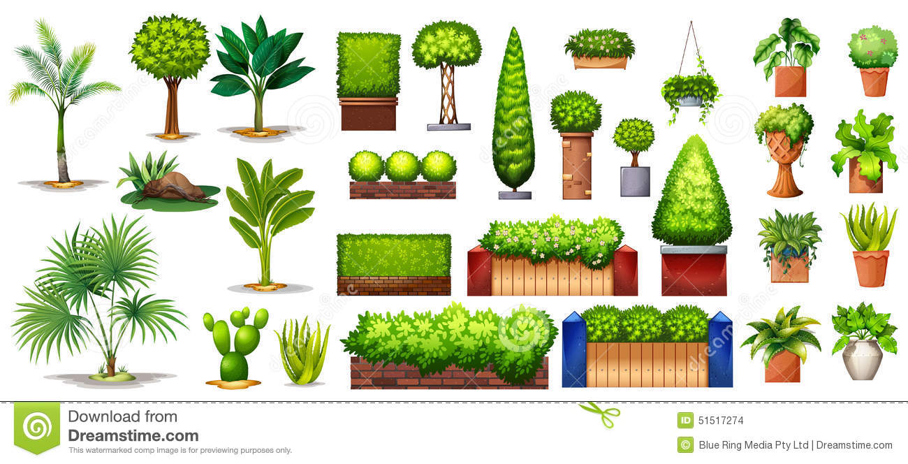 Different species of plants stock vector image 51517274 for Different garden plants