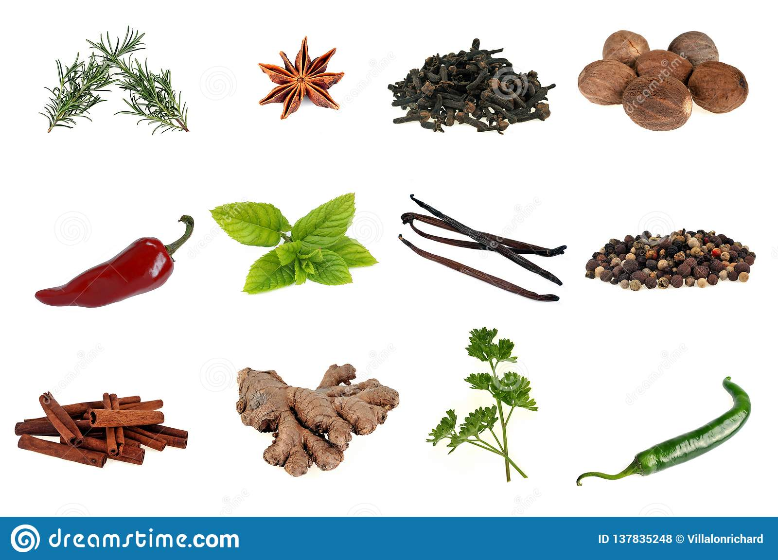 Various spices and aromatic plants on a white background