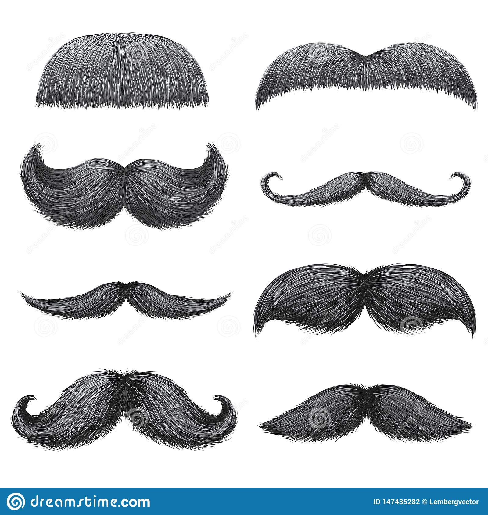Swell Different Styles Of Male Realistic Mustaches Set Chevron Dali Schematic Wiring Diagrams Amerangerunnerswayorg