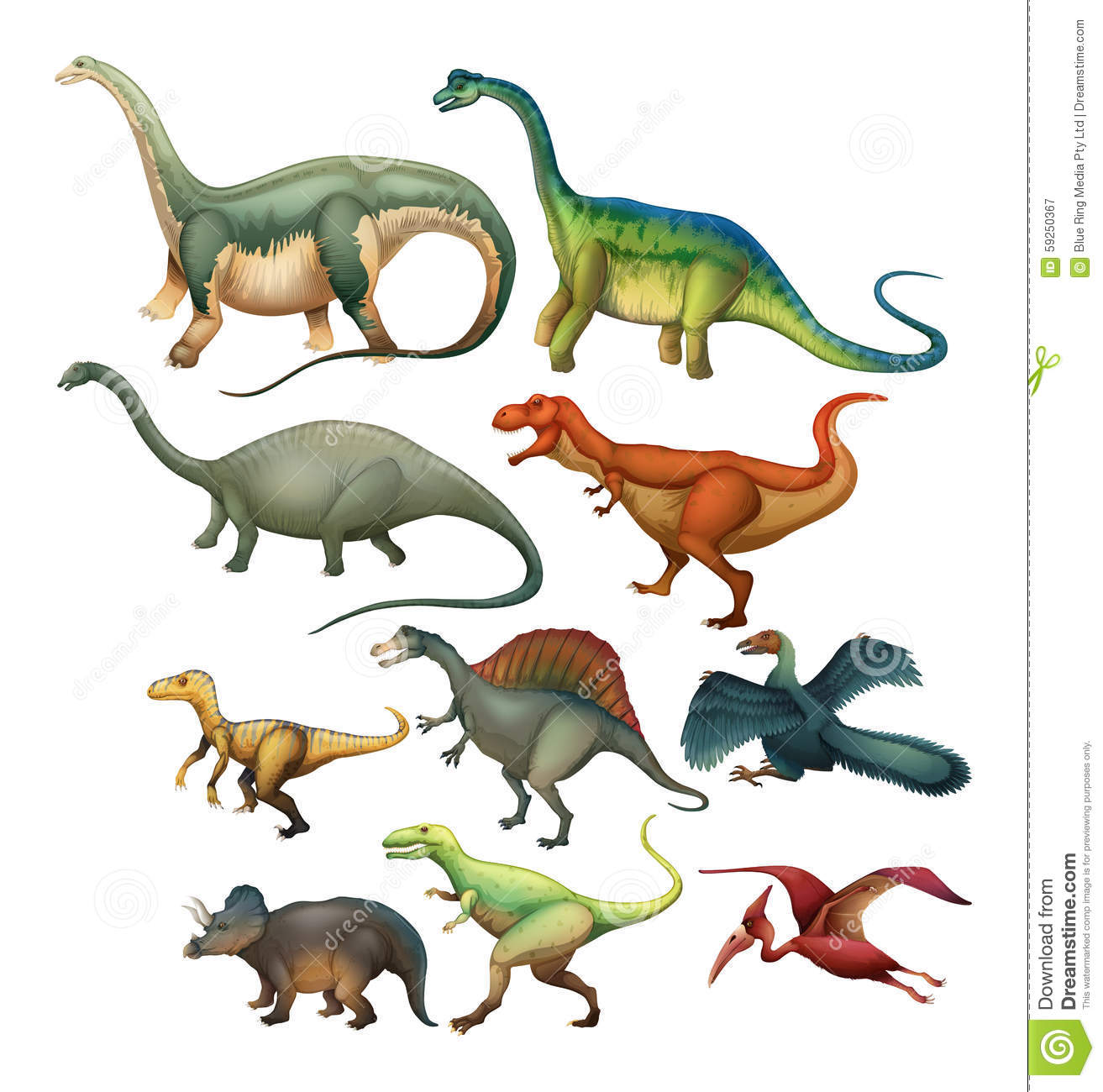 Different Type Of Dinosaurs Stock Vector Illustration Of