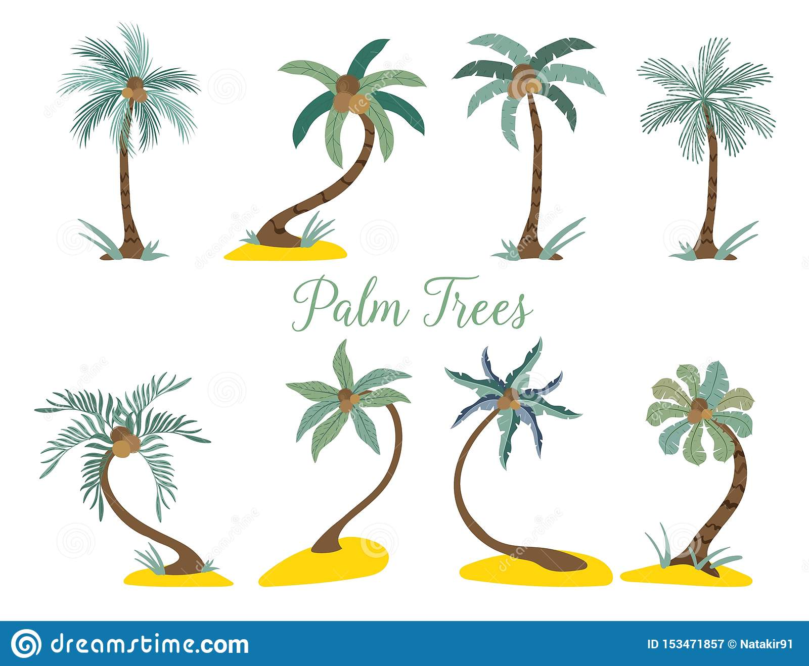 Different type palm trees on the beach.